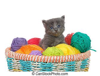 grey kitten sitting in a basket of yarn balls