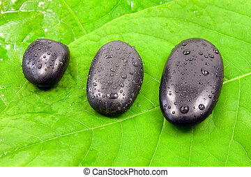 stones on the green leaves