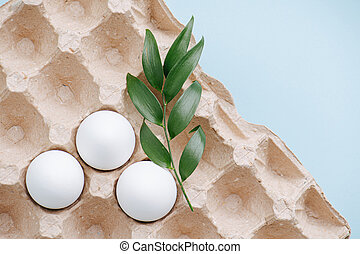 Three white chicken eggs in a cardboard case and a plant branch. Top view.