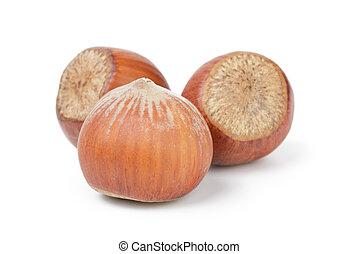 three whole hazelnuts, isolated on white background