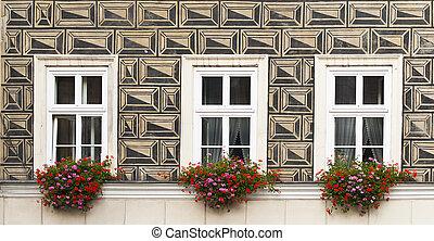 Three windows with flowers