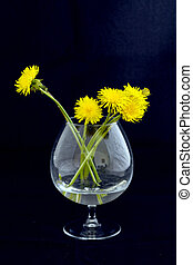 three yellow flowers of the twig