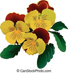 Three yellow pansy flowers with leaves