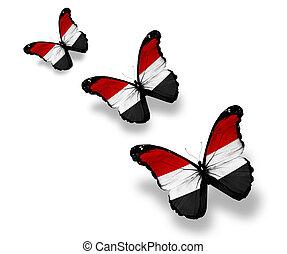 Three Yemeni flag butterflies, isolated on white