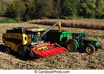 thresher in the field of corn in autumn