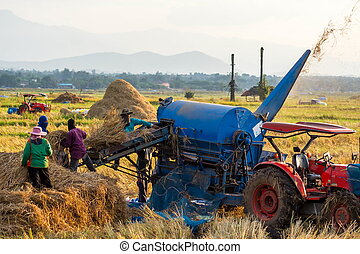 Thresher - Threshing machine working in rural areas in...