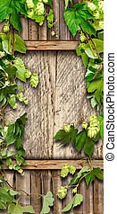 Thrickets of hop on a wooden wall