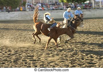 Thrills and Spills - a rider falls from a bucking horse. ...