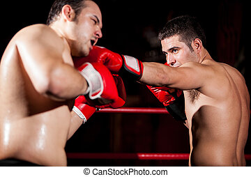 Stronger boxer punching his opponent during a fight