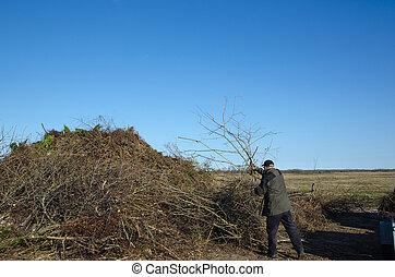 Throwing garden twigs in a heap
