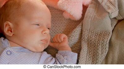 thuis, baby jongen, slapende, 4k