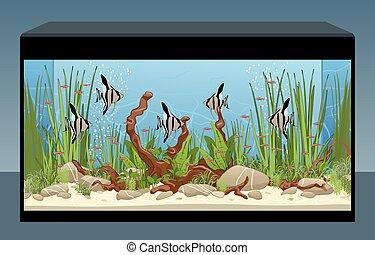 thuis, geplante, aquarium