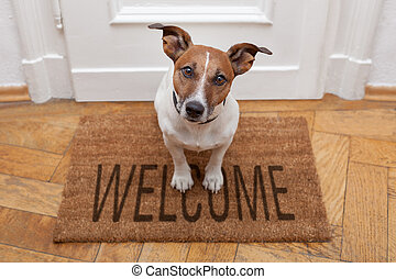 thuis, welkom, dog