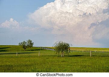 Thunderhead Over The Meadow