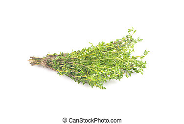 Thyme an isolated on white background. Clipping path