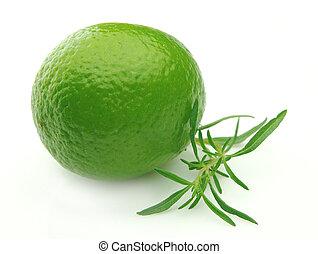 Thyme and laim. lemon