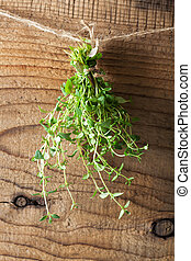 thyme hanging on a rope