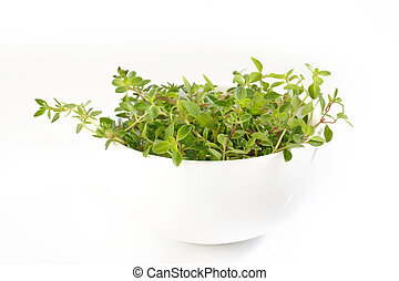 thyme in a white bowl