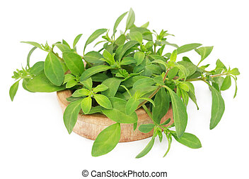 Thyme leaves in a wooden bowl
