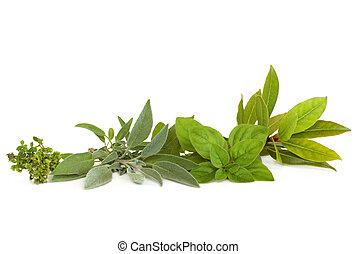Thyme, Sage, Oregano and Bay Herbs - Thyme, sage, oregano...