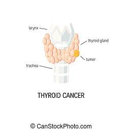 thyroid mirigy, vektor
