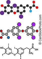 Thyroxine (T4, levothyroxine) thyroid hormone molecule. Prohormone of thyronine (T3). Used as drug to treat hypothyroidism.