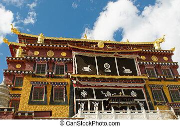tibétain, shangri-la, porcelaine, songzanlin, monastère