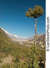 Tibetan green valley, view from Annapurna trek