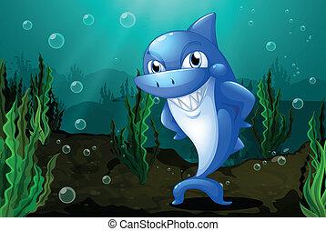tiburón azul, mar, debajo