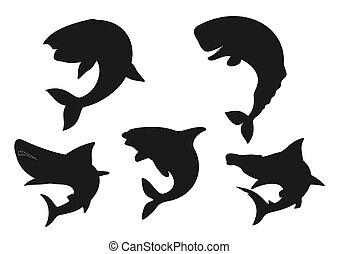 tiburón, ballena, orca, animal, negro, siluetas