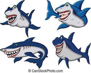 tiburón, caricatura, colección