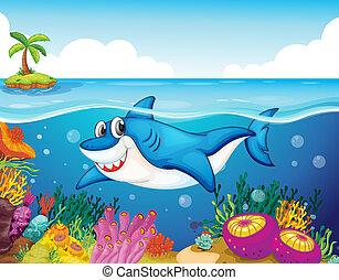 tiburón, pez, mar