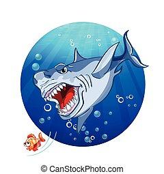 tiburón, pez pequeño, ilustración, persecución