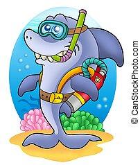 tiburón, zambullidor de la escafandra autónoma, en, mar,...