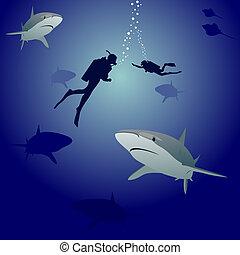 tiburones, buzos