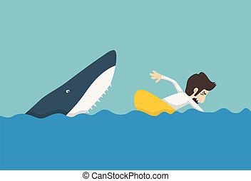 tiburones, hombre de negocios, natación, escape