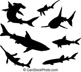 tiburones, siluetas, vector