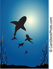 tiburones, vector
