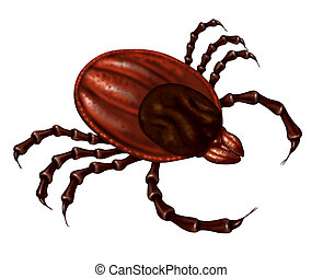 Tick Insect - Tick insect close up illustration isolated on...