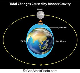 Tidal changes - An image showing the tidal changes caused by...