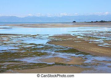 Tidal mudflats landscape. Wetlands at Tapu Bay, South Island, New Zealand.