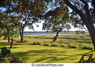 Tidal Salt Marsh on a Sunny Day - Shoreline along a tidal...
