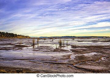 Tide Flats Nisqualli Wildlife Preserve 1