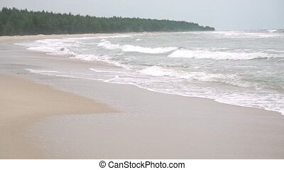 Tide on sandy beach and distant forest. Slow motion video...