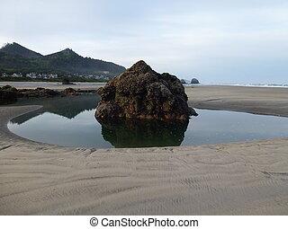 Tide Pool - Rock in a tidepool