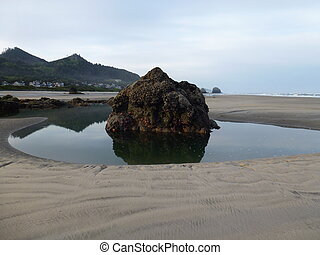 Rock in a tidepool