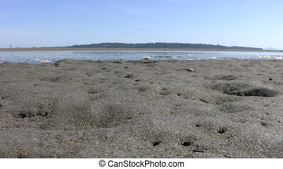 Tide Waters Coming In - A cool shot of tidal waters rising...