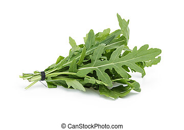 tied bunch of fresh arugula, isolated on white