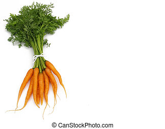 tied carrot bunch