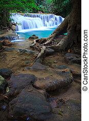 tief, wald, wasserfall, in, kanchanaburi, thailand